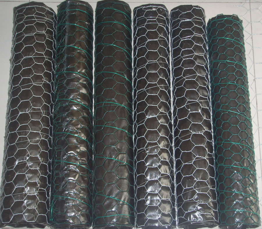 20 Gauge Galvanized And Green Vinyl Coated Woven Wire Netting of 25mm (one inch) Hole