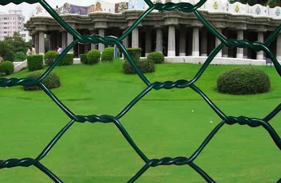 Green Plastic Coated Woven Wire Mesh