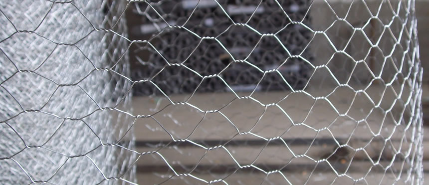 Galvanised Steel Chicken Wire for Wall Plastering Uses